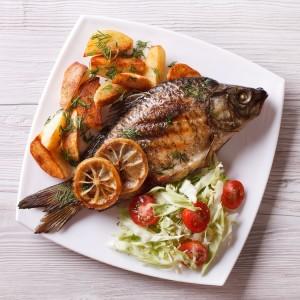 魚、アイキャッチ