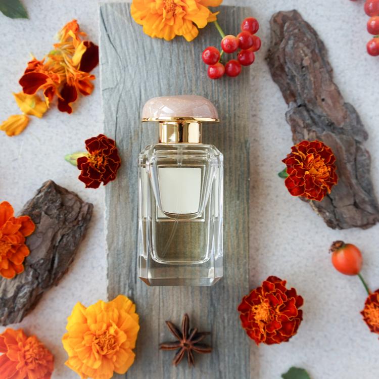 お気に入りの香りで秋を感じたい!しっとり落ち着く新作フレグランス特集