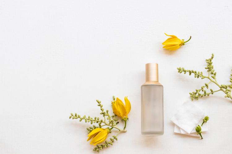 脂性肌に合う化粧水の選び方
